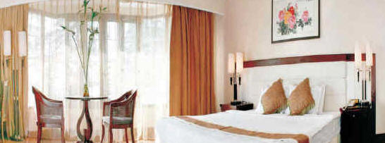 Rooms Conference Shimla